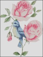 Bluebird and Rose